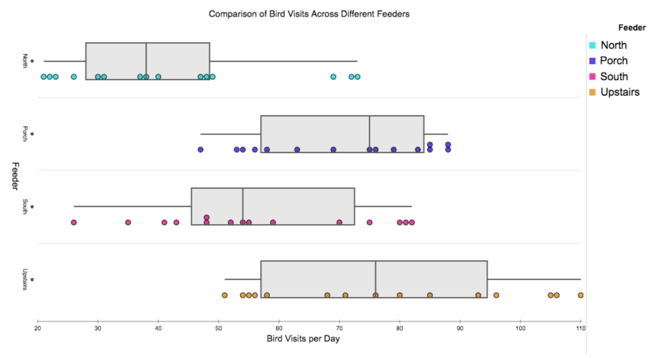 Comparison of bird visits to different feeders